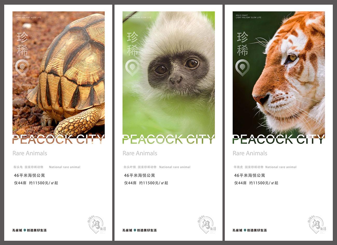 地产简约稀有动物海报AI源文件插图